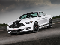 Ford Mustang Driving Experiences
